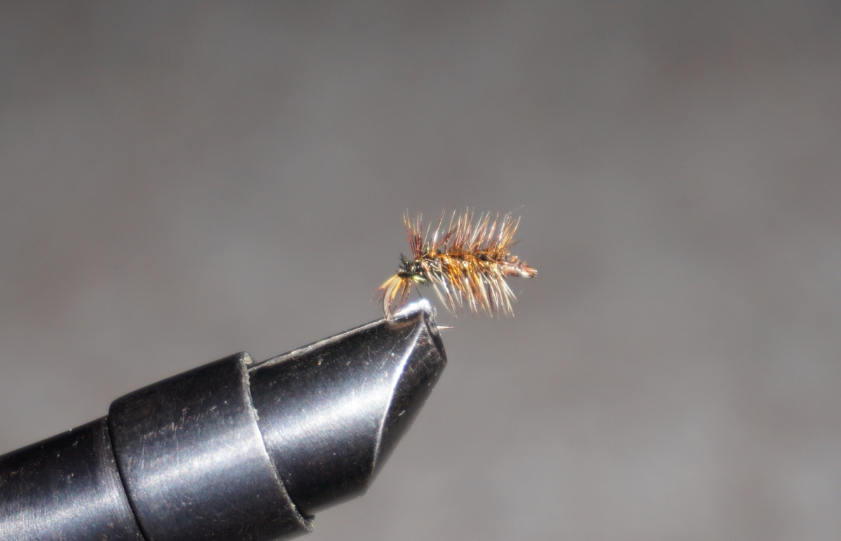 February Dry Fly : Griffith's Gnat